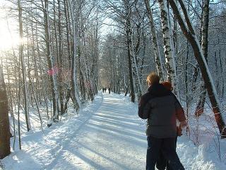 640px-Ruissalo_winter_road