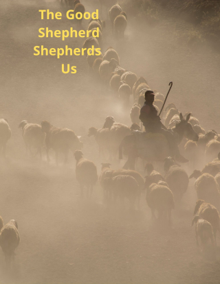 The Good Shepherd Shepherds Us